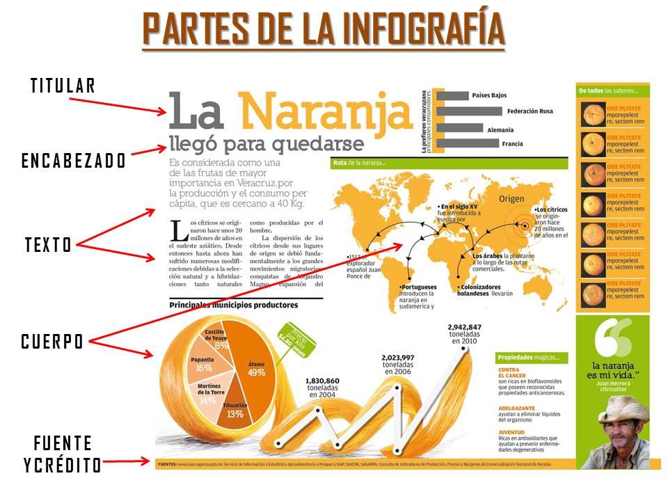 partes de la infografía